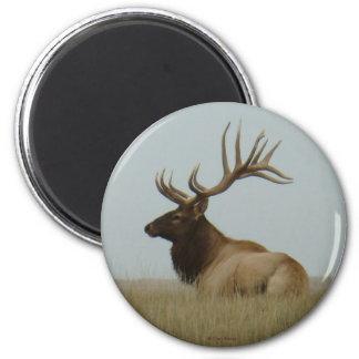 E0005 Bull Elk 2 Inch Round Magnet