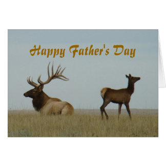 E0005 Bull Elk and Yearling Card
