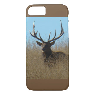 E0026 Bull Elk in the Weeds Iphone 8/7 phone case