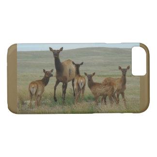 E0044 Cow Elk and Calves Iphone 8/7 phone case