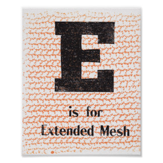 E is for Extended Mesh Poster