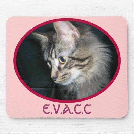 E.V.A.C.C. Tabby Kitty Mouse Pad