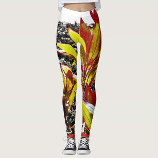 Ea Leggings