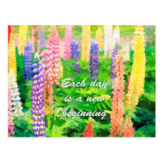 Each Day is a New Beginning Colorful Lupine Flower Postcard