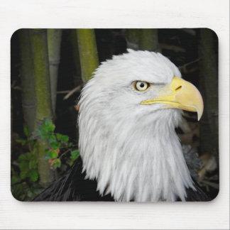 Eager Eagle Mouse Pad