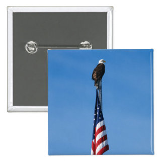Eagle and American Flag - button