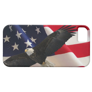 Eagle and Flag 2 iPhone 5 Cases
