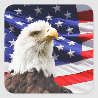 Eagle and Flag Square Sticker
