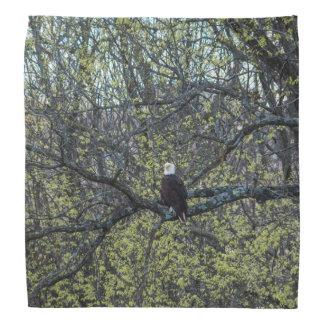 Eagle Awareness Bandana