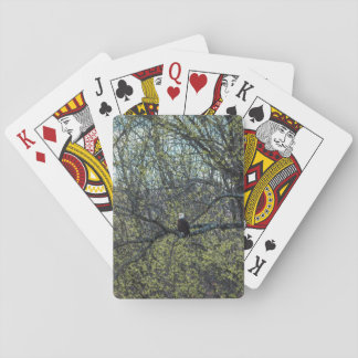 Eagle Awareness Playing Cards