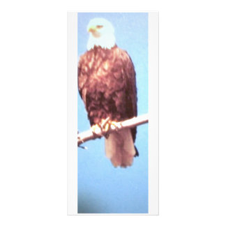 Eagle Bookmark/Rack Card