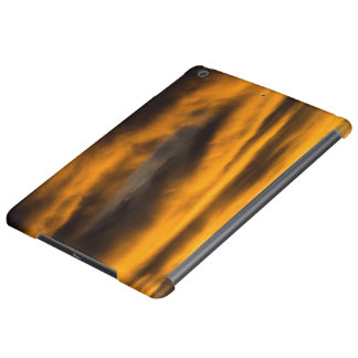 eagle burnout iPad air cover