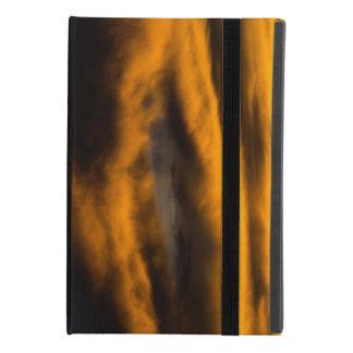 eagle burnout iPad mini 4 case