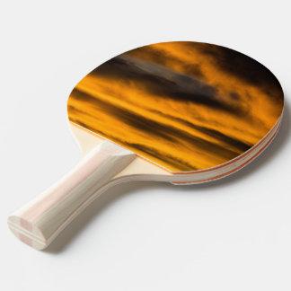 eagle burnout ping pong paddle