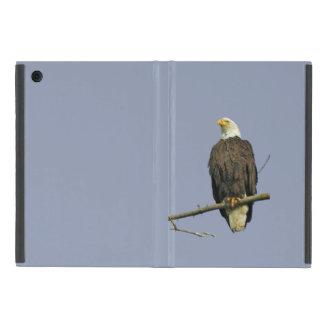 Eagle clad iPad Mini Case with No Kickstand