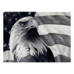 Eagle & Flag Poster Art