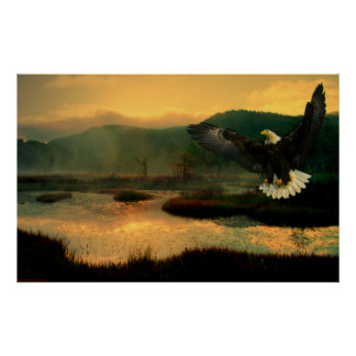 Eagle-Flight-Paint-1 Poster