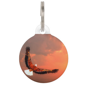 Eagle flying - 3D render Pet ID Tag