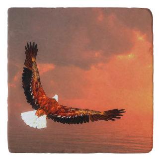 Eagle flying - 3D render Trivet