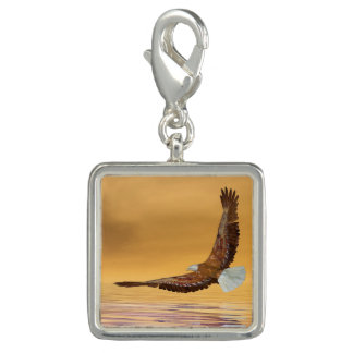 Eagle flying to the sun - 3D render Photo Charm