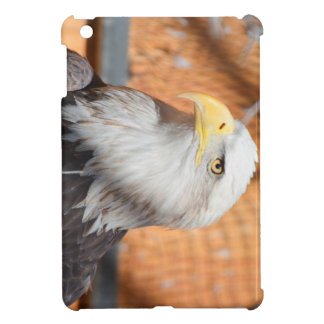 Eagle In God we trust Case For The iPad Mini