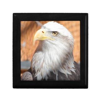 Eagle In God we trust Gift Box