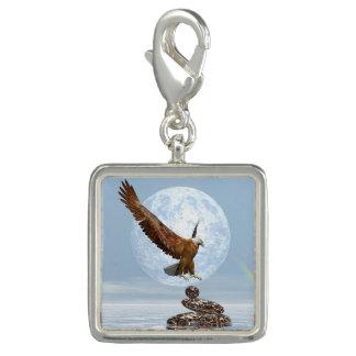 Eagle landing on balanced stones - 3D render Photo Charms