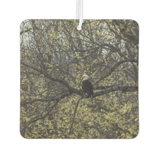 Eagle Lookout Painterly Air Freshener