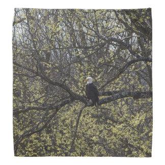 Eagle Lookout Painterly Bandana