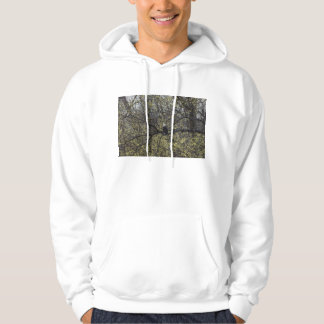 Eagle Lookout Painterly Hoodie