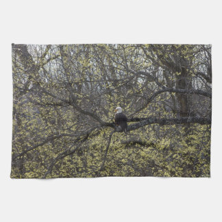 Eagle Lookout Painterly Kitchen Towel