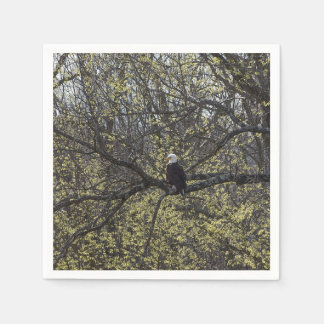 Eagle Lookout Painterly Paper Napkin