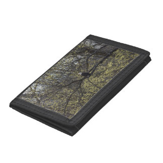 Eagle Lookout Painterly Trifold Wallet