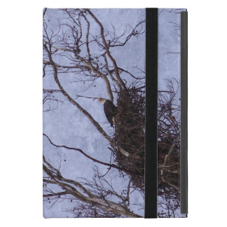 Eagle Lookout Painting Cases For iPad Mini
