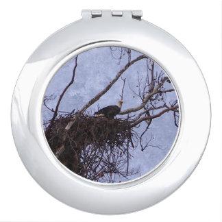 Eagle Lookout Painting Vanity Mirror