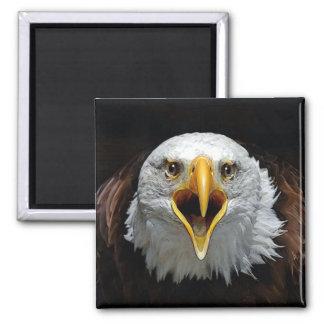 EAGLE MAGNET