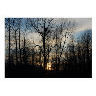 Eagle Nest Sunset Postcard