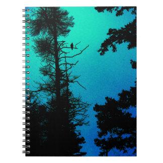Eagle Notebook