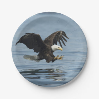 Eagle on Approach 7 Inch Paper Plate