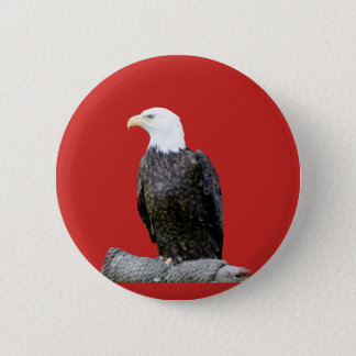 Eagle on Red Background 2 Inch Round Button