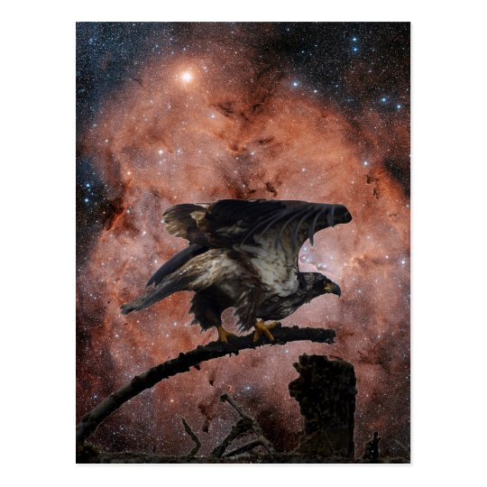 Eagle & Outer Space Gifts Postcard