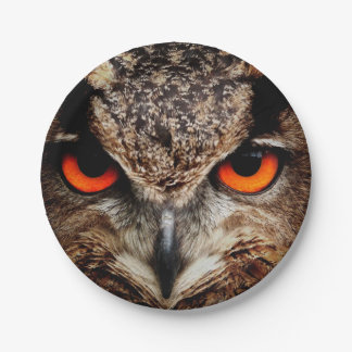 Eagle Owl 7 Inch Paper Plate