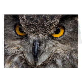 Eagle Owl Card