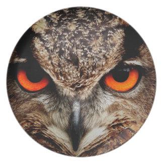 Eagle Owl Dinner Plates