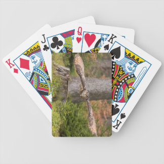 Eagle Owl in Flight Bicycle Playing Cards