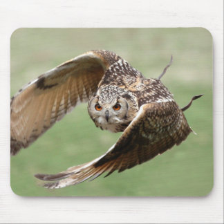 Eagle Owl In Flight Mouse Pad