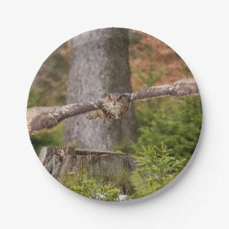 Eagle Owl in Flight Paper Plate