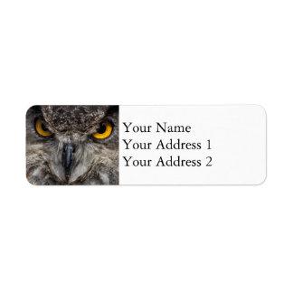 Eagle Owl Return Address Label