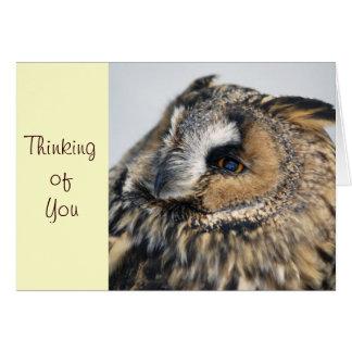 Eagle Owl Note Card