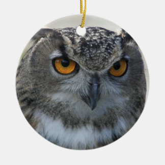 Eagle Owl Photo Ceramic Ornament